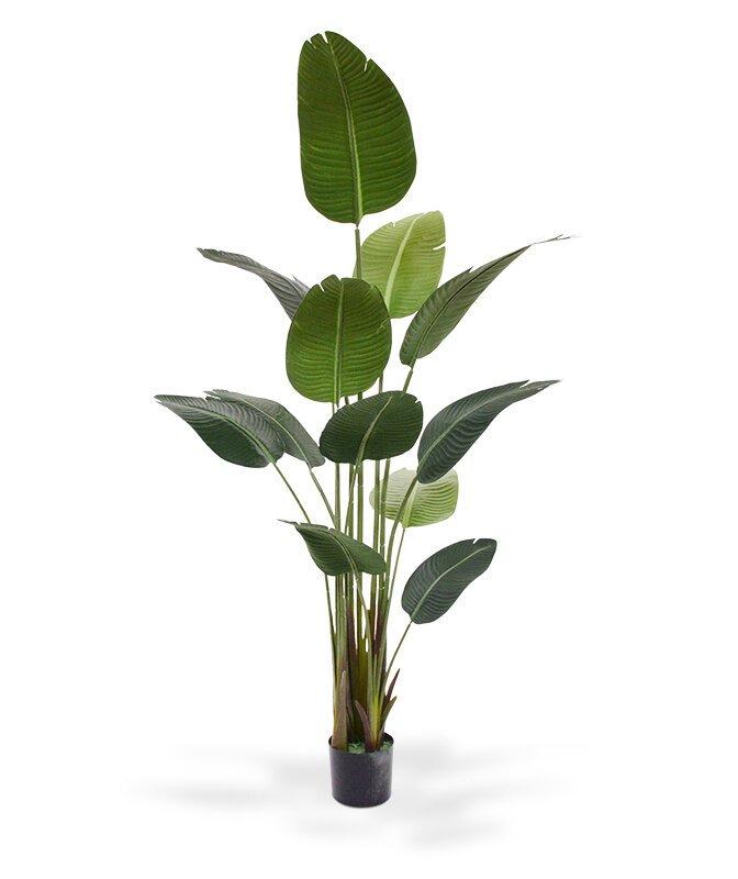 Umelá rastlina Strelitzia Nicolai 180 cm