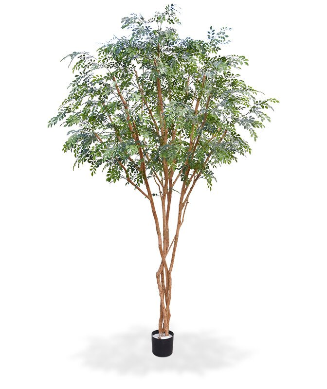 Umelý strom Murraya Deluxe 325 cm