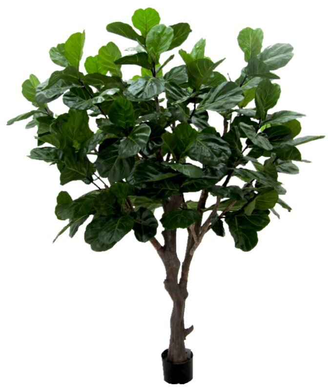 Umelý strom Lyrata 260 cm