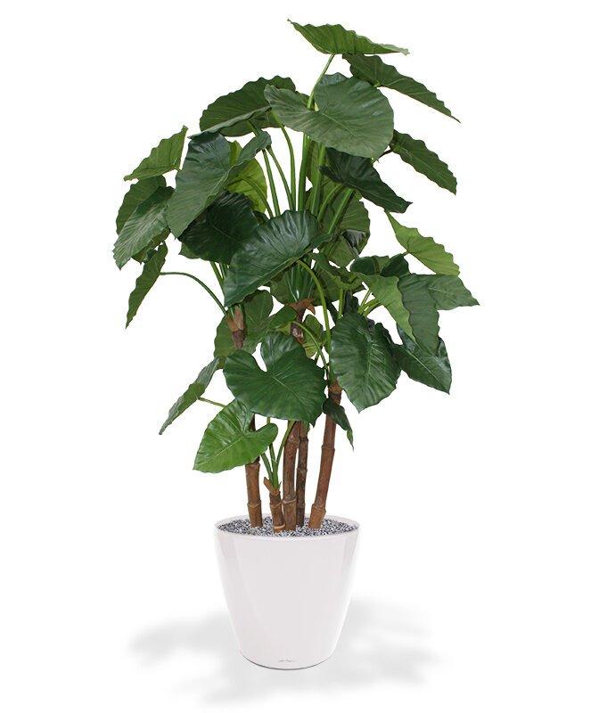 Umelá rastlina Alocasia Calidora Deluxe 165 cm