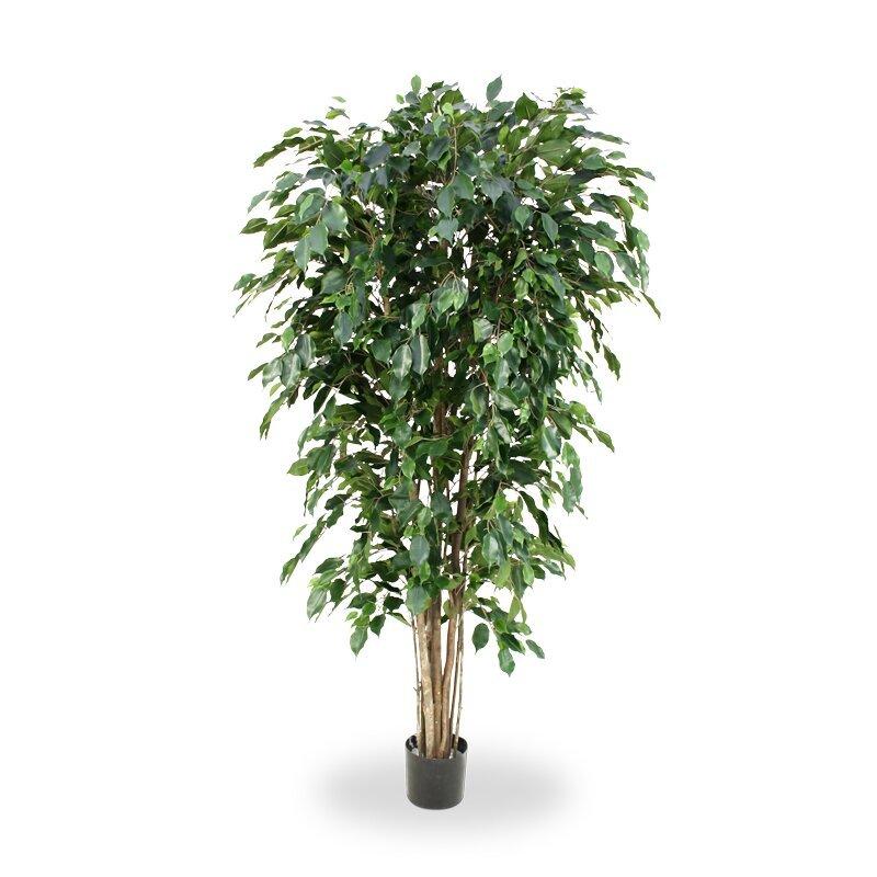 Umelý strom Ficus Exotica Deluxe 180 cm - zelený