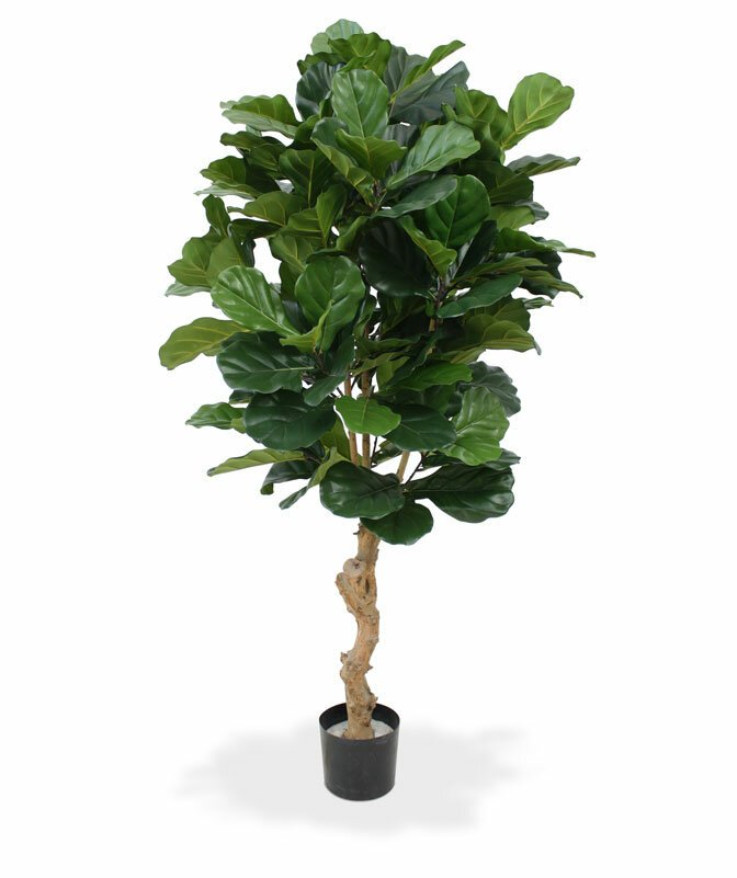 Umelá rastlina Lyrata Deluxe 155 cm