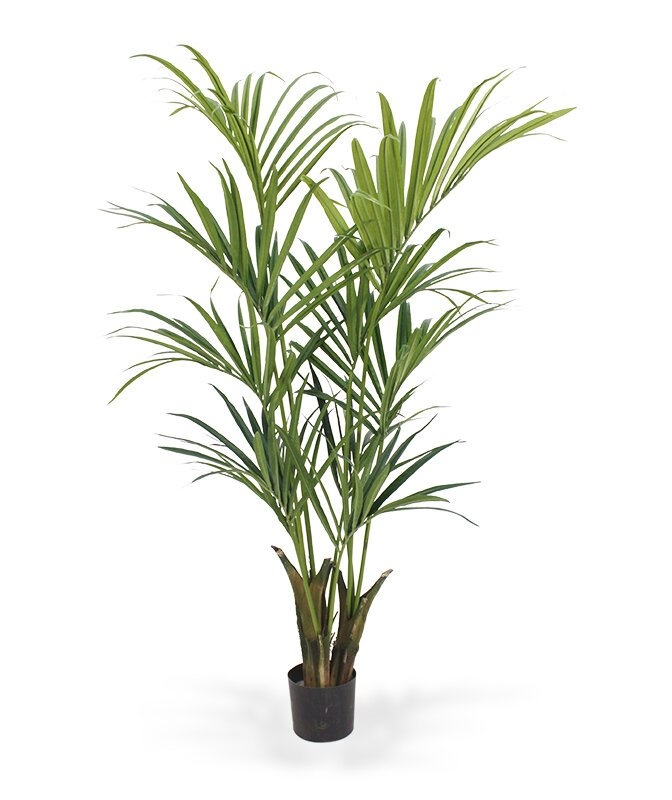 Umělá palma Kenta Deluxe 165 cm