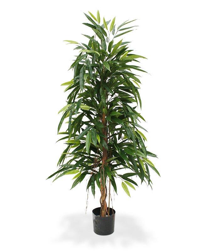 Umelá rastlina Longifolia Royal 150 cm