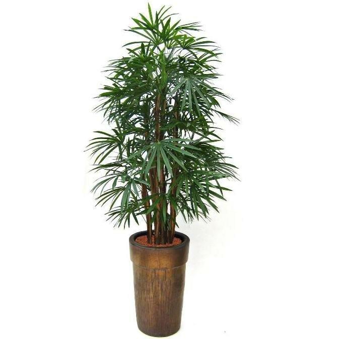 Umelá palma Raphis 190 cm