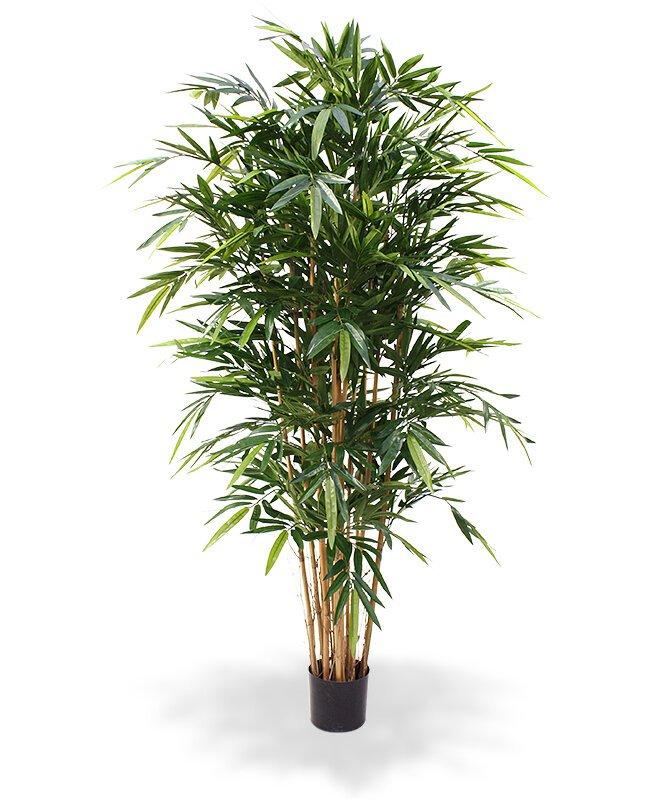 Umelý Bambus Deluxe 180 cm
