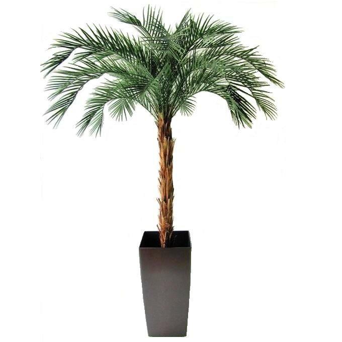 Umelá palma Phoenix Deluxe 225 cm