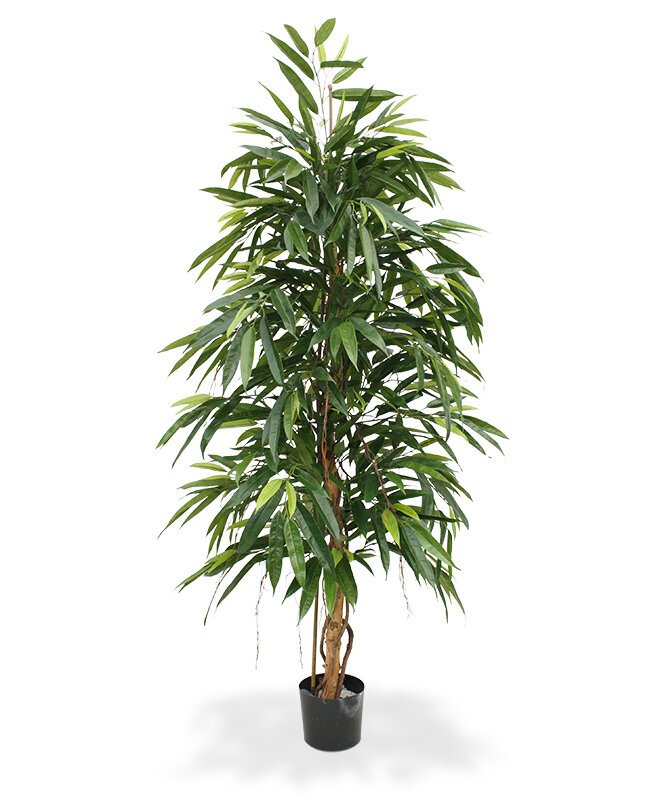 Umelá rastlina Longifolia Royal 175 cm