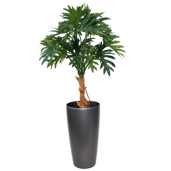 Krásna umelá rastlina Philo Selloum 130 cm
