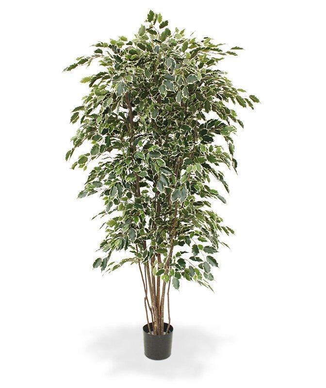 Umělý strom Ficus Exotica Deluxe 210 cm - pestrý