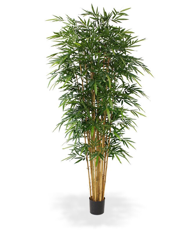 Umělý bambusový strom Deluxe 240 cm