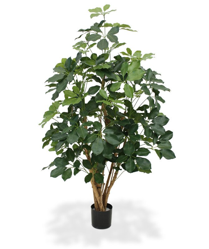 Umelá rastlina Šeflera 20 cm