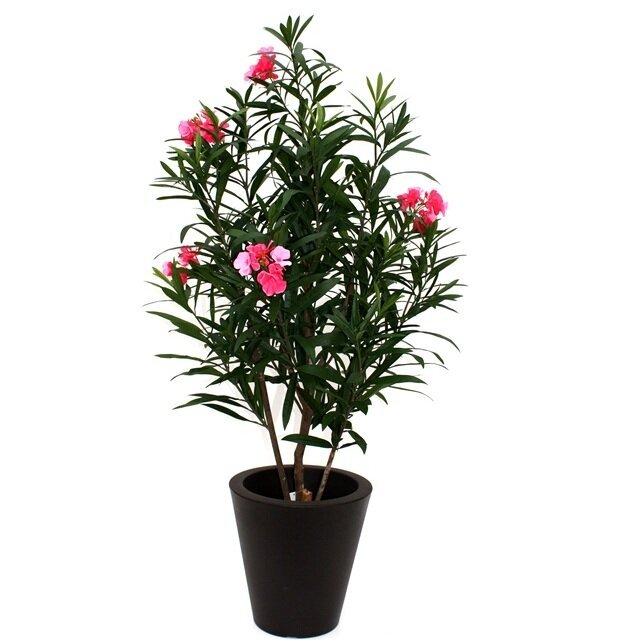 Umelý ružový Oleandrový strom 150 cm