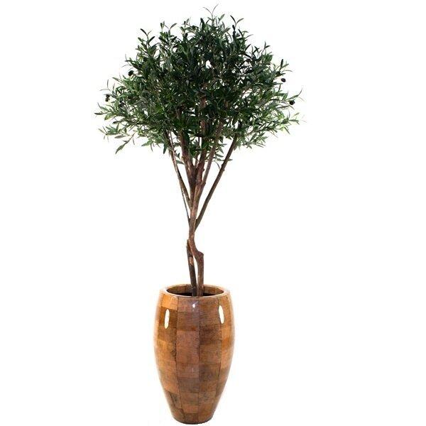 Umelý olivovník DeLuxe 165 cm