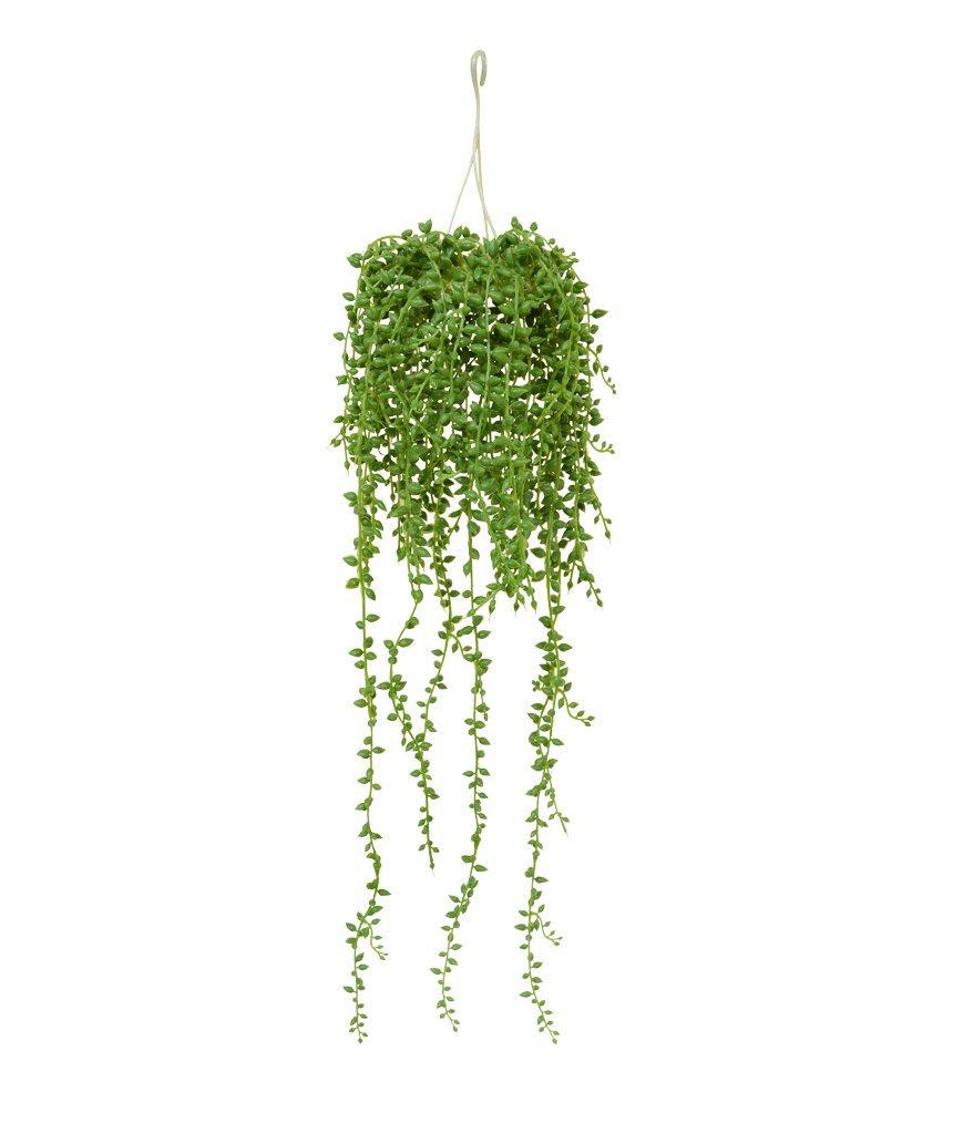 Umelá rastlina Senecio 60 cm