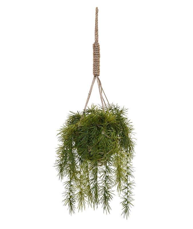 Umelý Asparagus v košíku 80 x 30 cm