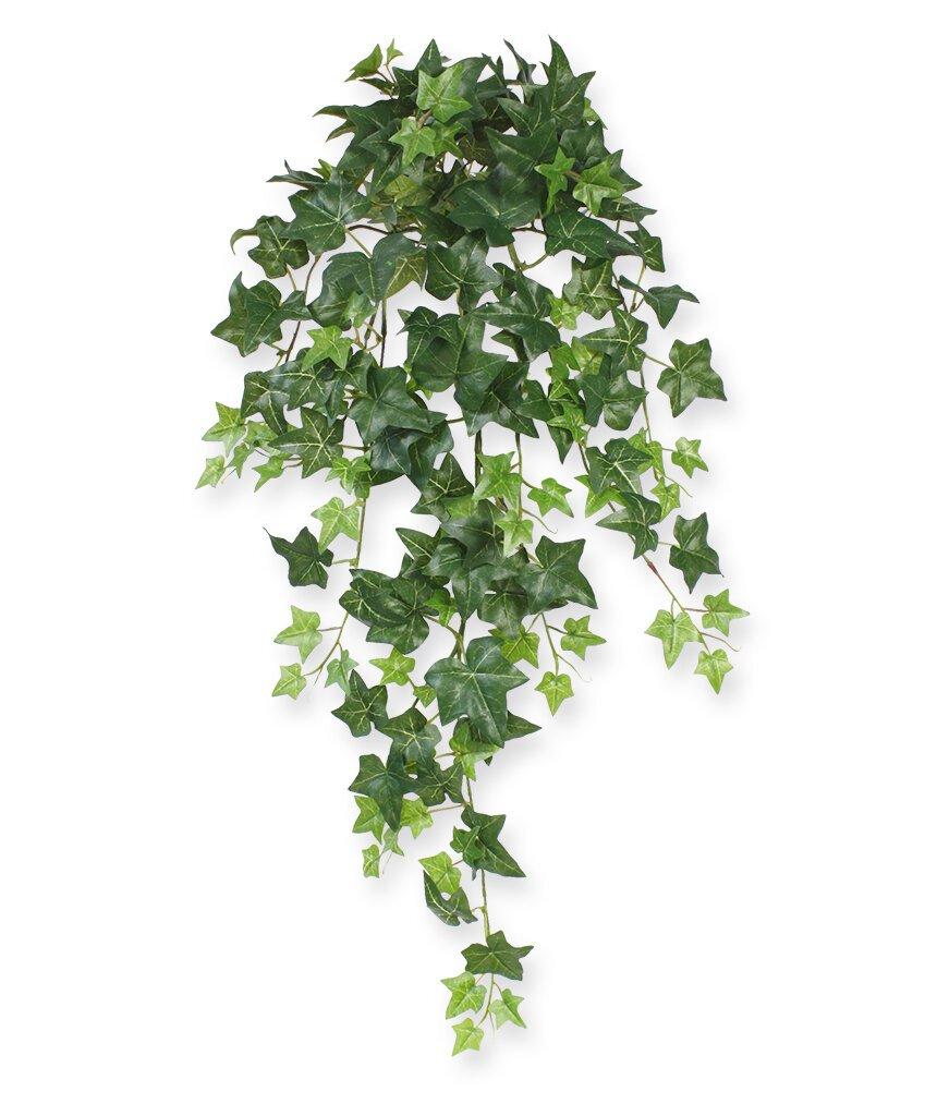 Umělá úponky Břečťan 75 cm - zelená