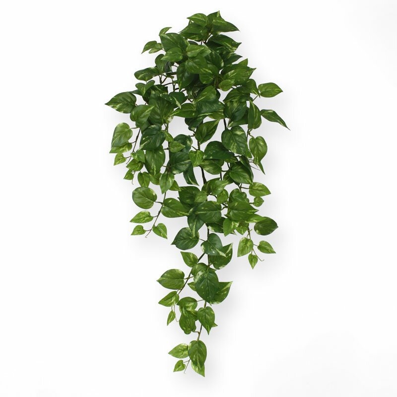Umělá závěsná rostlina Scindapsus 75 cm