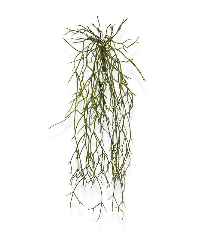 Závěsná umělá Rhipsalis Micrantha 55 cm