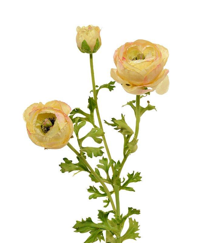 Umelá vetva Iskerník 70 cm - krémovo ružová