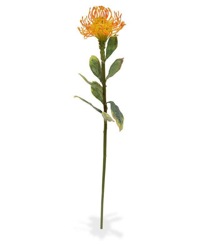 Umělá větev rostliny Leucadendron 60 cm - oranžová