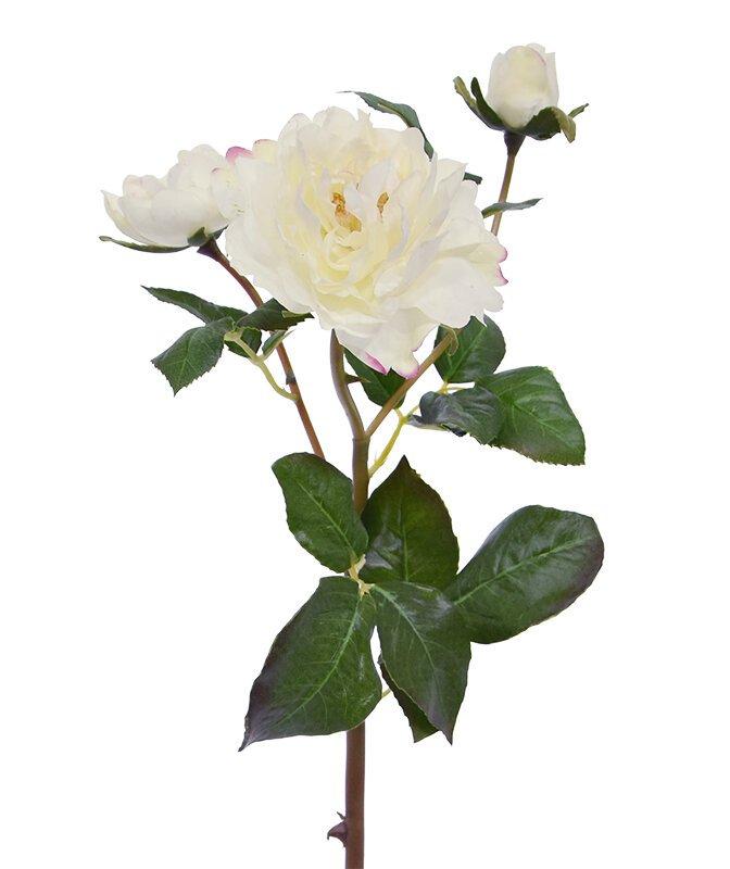 Umělá větev růže 50 cm - krémová