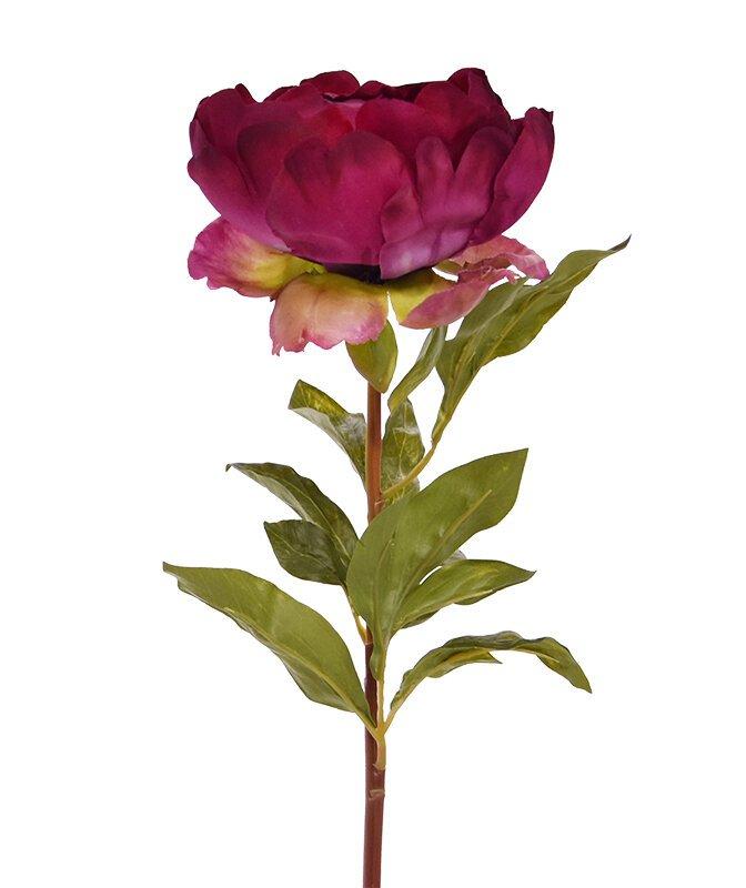 Umelá luxusná vetva Ruža - Pivonka 55 cm - bordovo červená