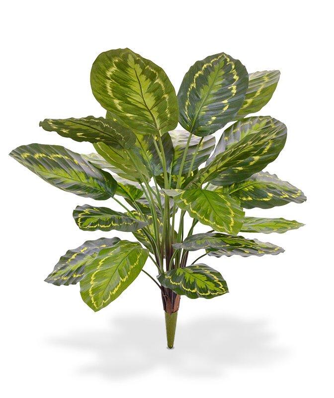 Umělá rostlina Calathea 65 cm