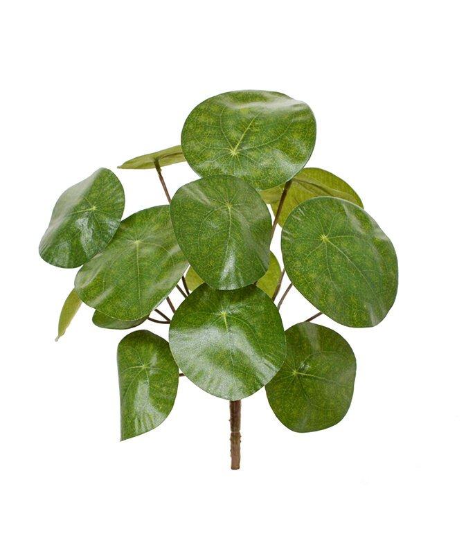 Umělá rostlina Chinese Money 20 cm