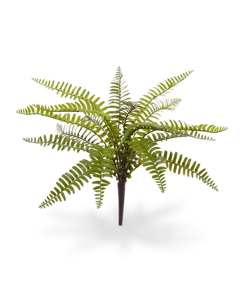 Umelá rastlina Asplenium 35 cm