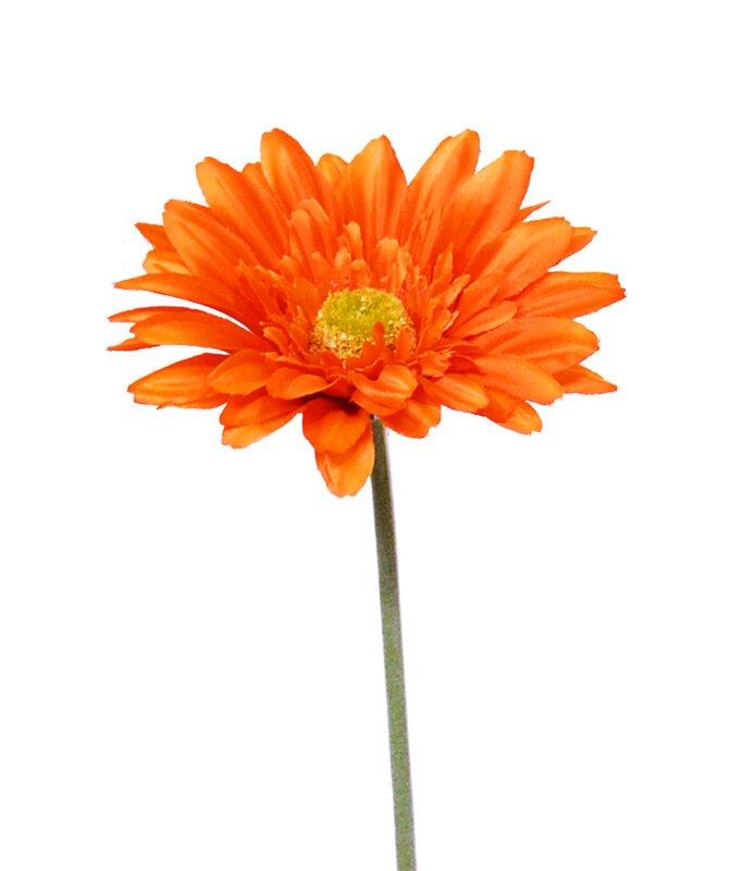 Umelý kvet stonky Gerbera 60 cm oranžový