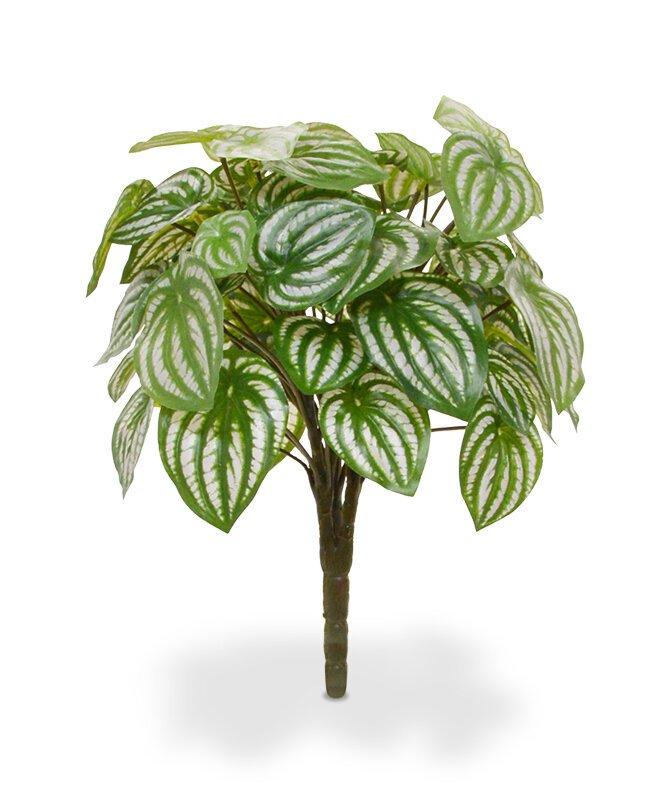 Umelá rastlina Peperomia 30 cm