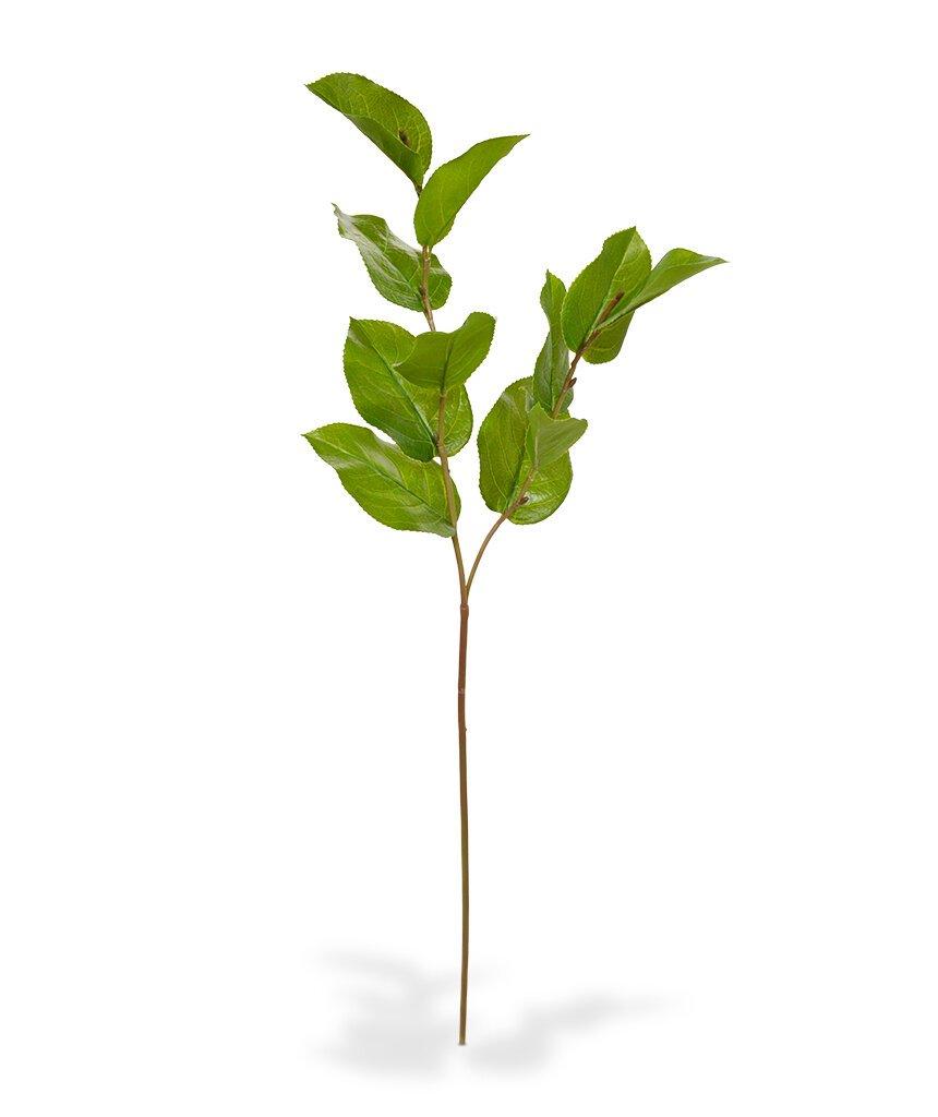 Umělá větev Salal Deluxe 65 cm