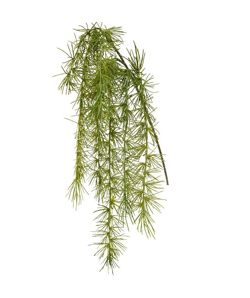 Dekoračná zeleň špargľa 40 cm