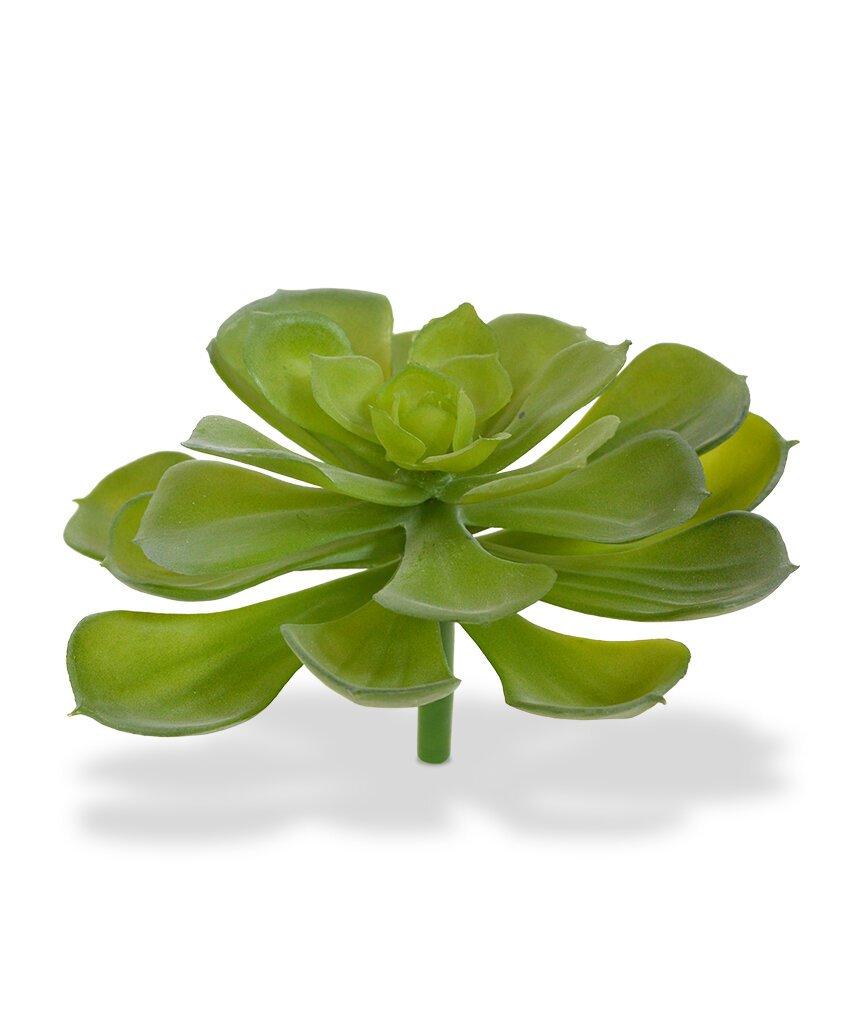Umělá rostlina Echeveria Setos