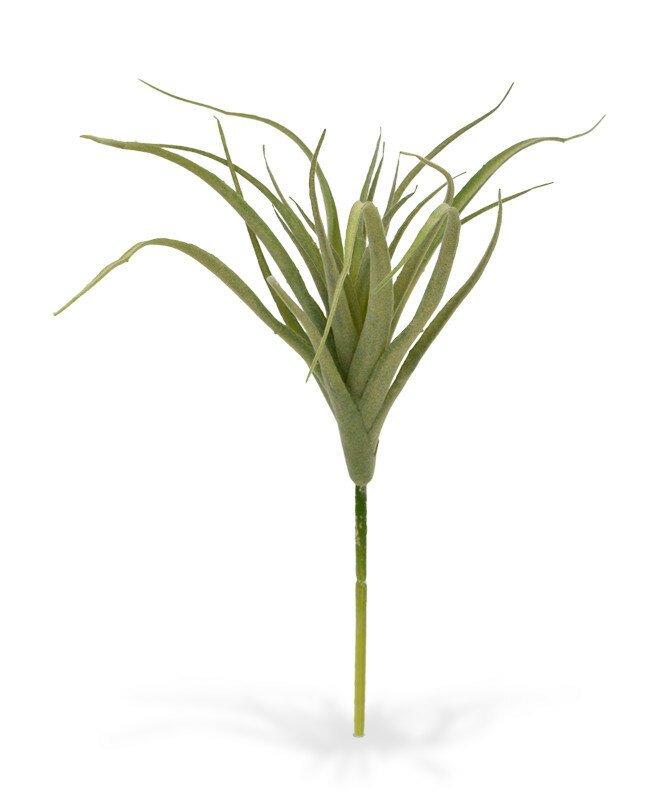 Umělá rostlina Tillandsia 20 cm