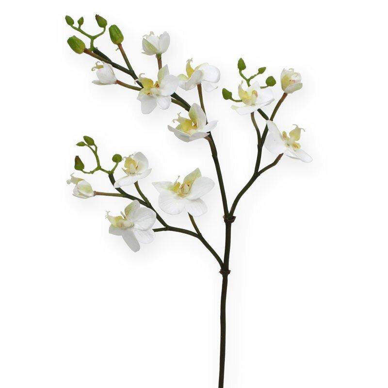 Umělá větev Mini Phalaenopsis bílá 60 cm