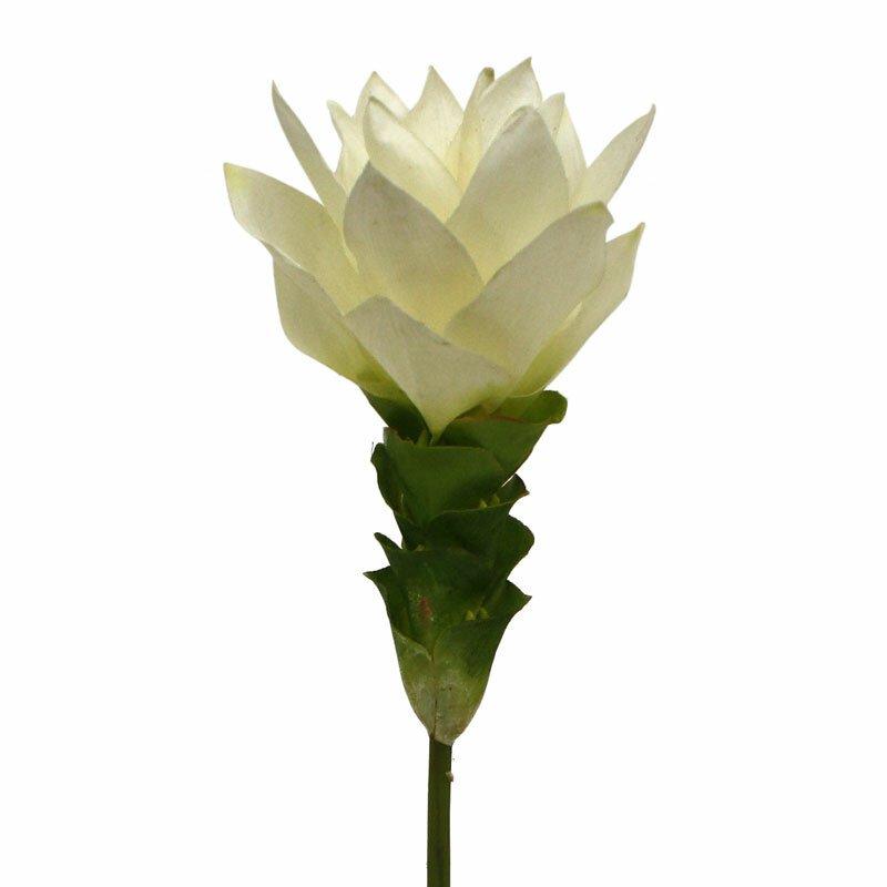 Květina umělé kurkumy 50 cm bílá