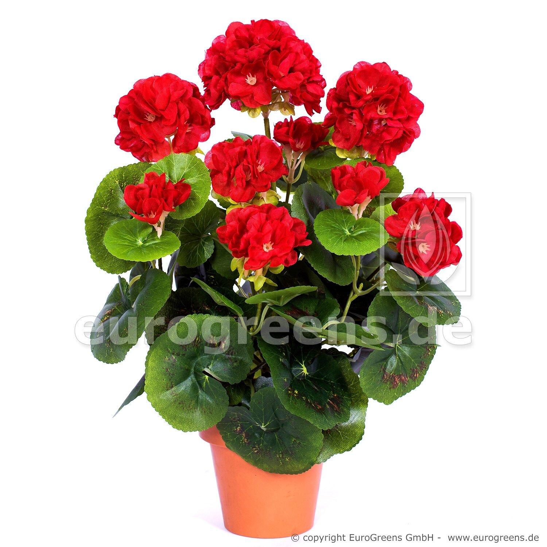 Umělá rostlina Pelargónie červená 35 cm