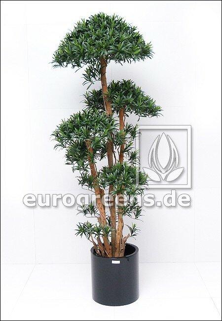 Umělý strom Podokarpus 180 cm