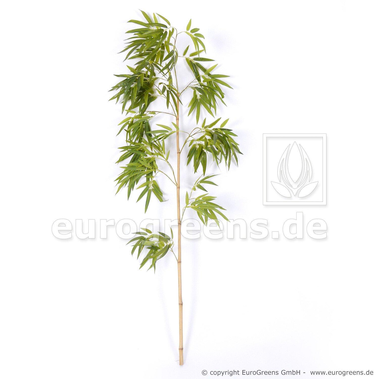 Prírodný kmeň čínska bambusová palička s listami 150 cm