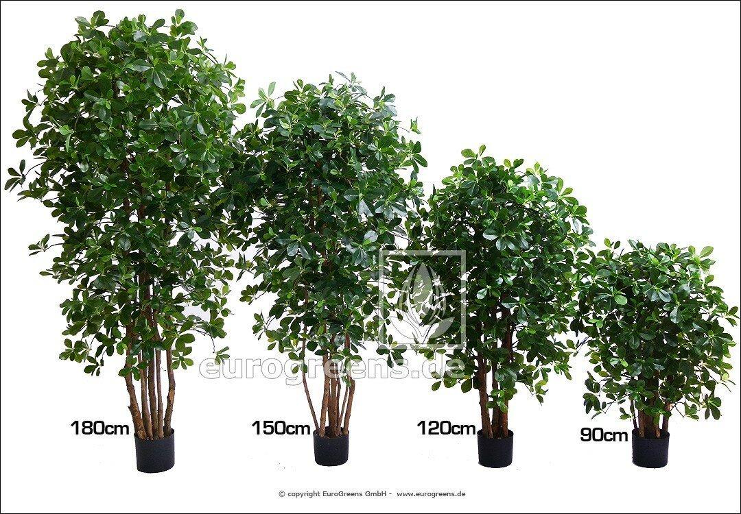 Umělá rostlina orientální Fikus 130 cm