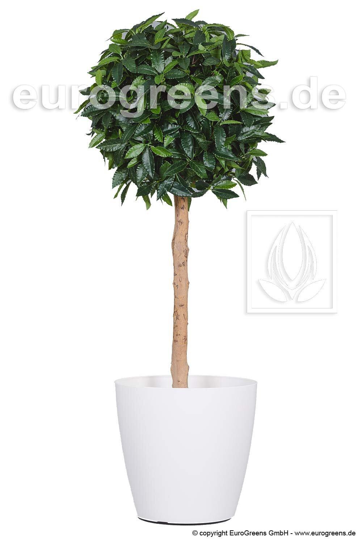 Umelý strom Vavrínovec 130 cm