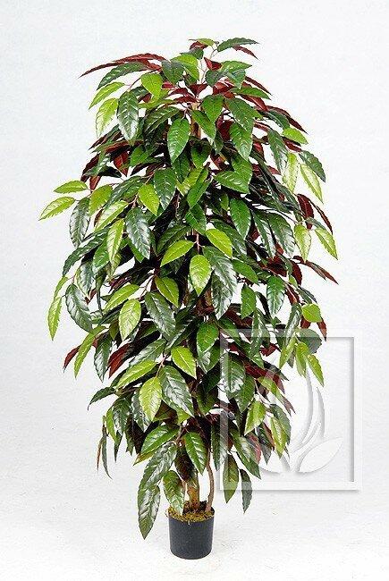 Umělá rostlina capensis 130 cm