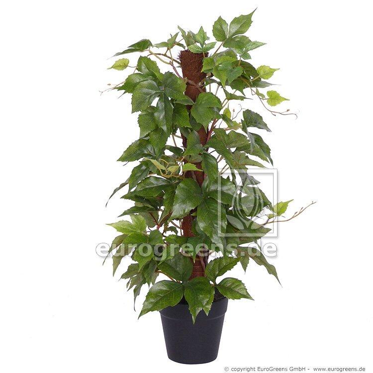 Umělá rostlina divoký Réva na sisalových holi 50 cm