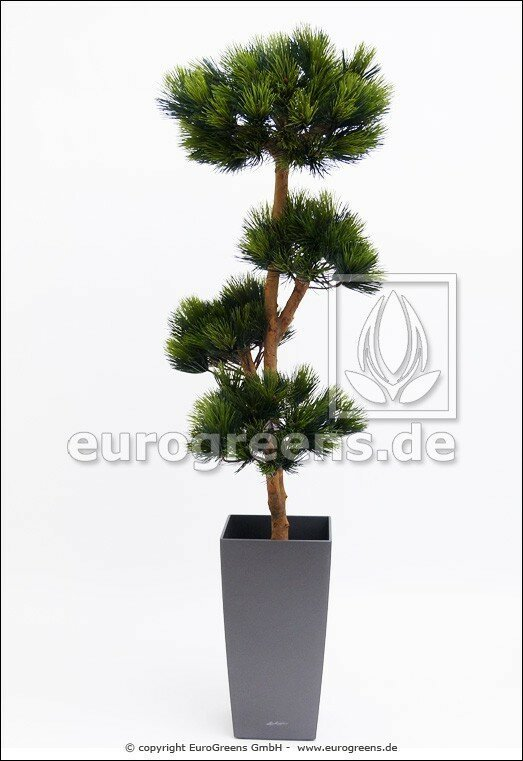 Umělý Bonsai - Borovice 180 cm