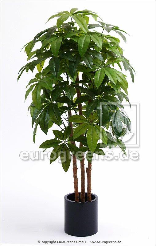 Umělá rostlina šeflery 180 cm
