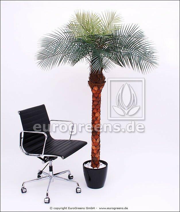 Umělá palma Phoenix 170 cm