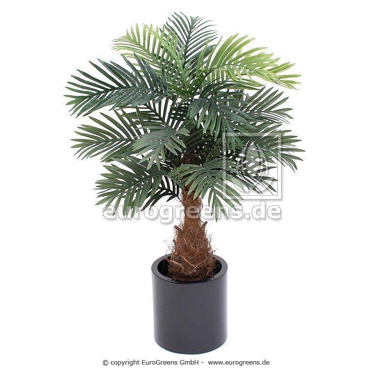 Umělá Mini palma Phönix DeLuxe 105cm