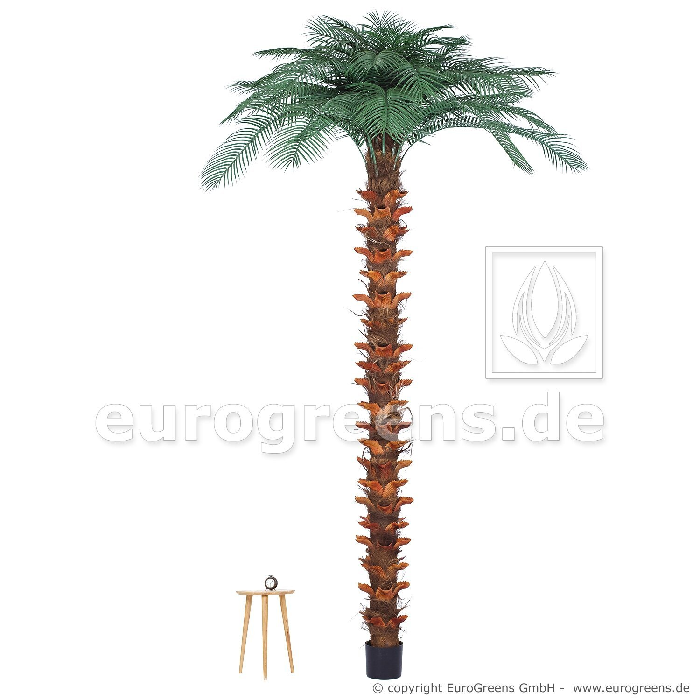 Umělá palma Butia capitata 300 cm